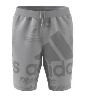 Adidas Daily Press Short Kraťasy sivé