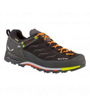 SALEWA MS MTN TRAINER GTX TOPANKY M