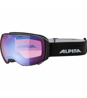 Alpina Big Horn Hm Lyž. Grey Black Matt Okuliare