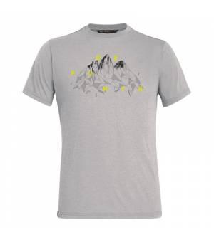 Salewa Illustration Drirelease M T-Shirt heather grey tričko