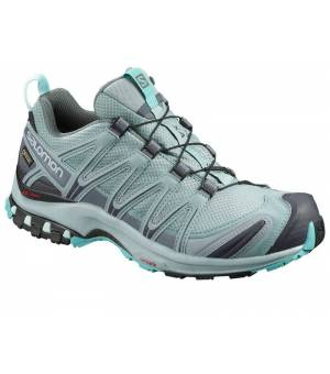 Salomon XA PRO 3D GTX W Lead / Stormy Weather / Meadow